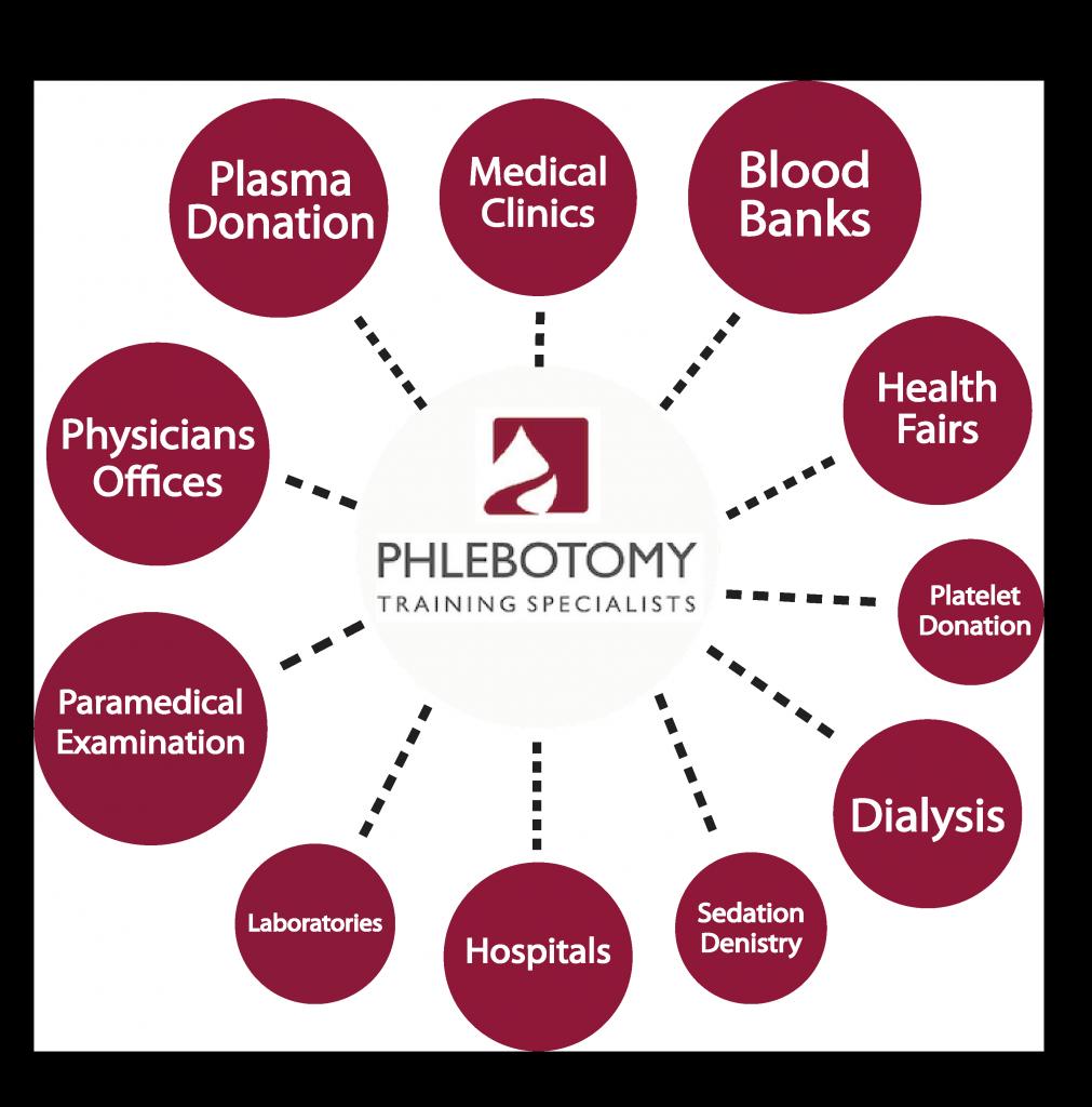 Phlebotomist Career Paths