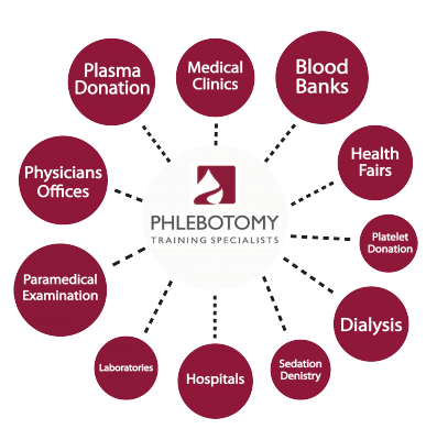 Phlebotomy Employment Opportunities